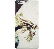 Pacatus Gold Dragon iPhone Case/Skin