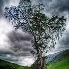 Glen Etive, The Highlands by Aj Finan