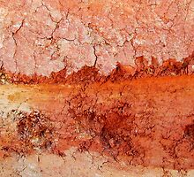 Red Earth Sunset by Kathie Nichols