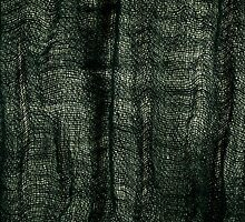 Green grunge cloth texture by Arletta Cwalina