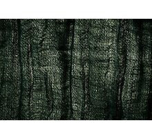 Green grunge cloth texture Photographic Print