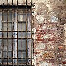 Barred Window by Rae Tucker