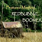 FEATURED MEMBER BANNER-Redbubble boomers by ctheworld
