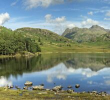 Blea Tarn in August..The Wider View by Jamie  Green