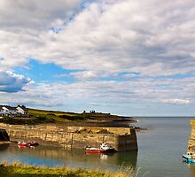 The Walk from Craster Harbour Northumberland  by James  Key