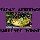 TUESDAY AFTERNOON BANNER by ctheworld
