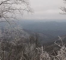 """East Tennessee Winter"" by Susan campos"