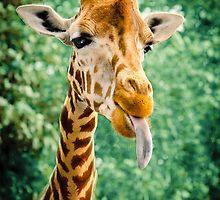 Rude Raspberry Giraffe by mumblebug