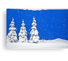 Snow-covered trees on blue Canvas Print