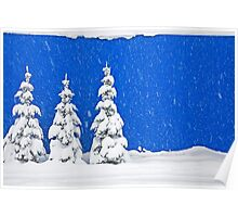 Snow-covered trees on blue Poster