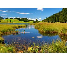 Summer in the Austrian Alps Photographic Print