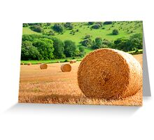 Harvest - West Sussex Greeting Card