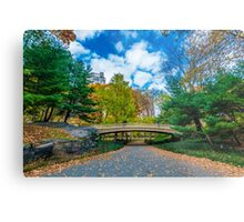 Central Park - New York Metal Print