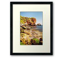 shore beauty Framed Print