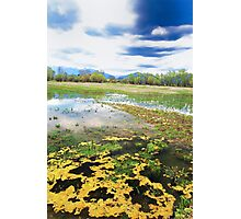 yellow view of the landscape Photographic Print