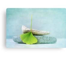 driftwood, stone and a gingko leaf Canvas Print