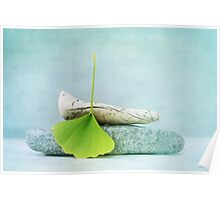 driftwood, stone and a gingko leaf Poster