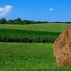 Bale of Hay by Marcia Rubin