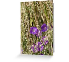 Grass 2 Greeting Card