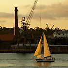 Evening Sail Cockatoo Island by Nick Wilsher