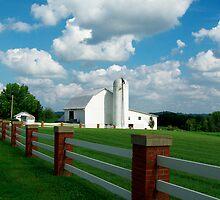White Barn by Marcia Rubin