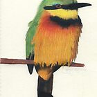 Little Bee-Eater by Bryony Griffiths
