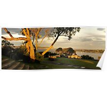 Evening Light at Georges Head Poster