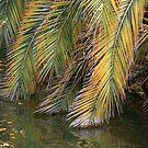 Golden Palms by Ellen Cotton