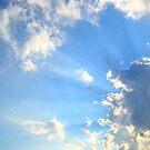 Today's Sun Rays  by DearMsWildOne