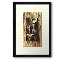 Twin Nimbus Framed Print