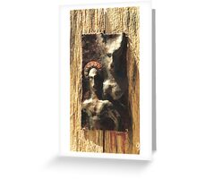Twin Nimbus Greeting Card