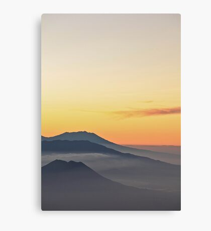 - god layer - Canvas Print