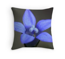Wahlenbergia gracilis  Throw Pillow