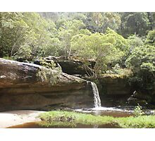 Irrawong Reserve, Narrabeen, Sydney Photographic Print