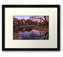 Tree Surround Framed Print