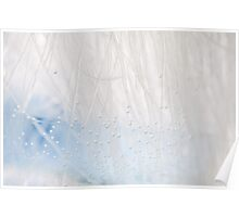 White blue water air bubbles Poster
