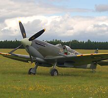 Spitfire Mk IXB by Chris Day