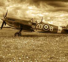 Spitfire Mk IXB by Chris Day