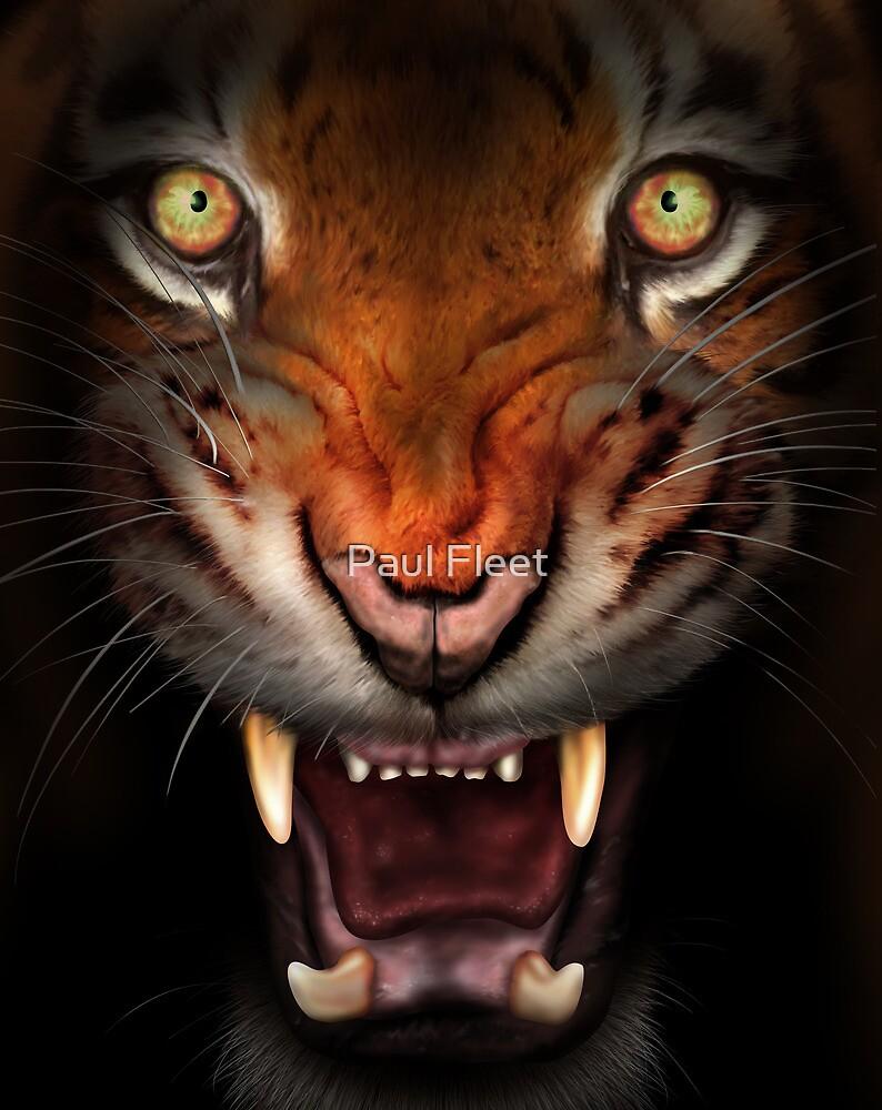 Fierce tiger by Paul Fleet