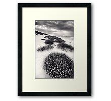 The Dunes of Thrift BW Framed Print