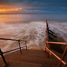 Early Morning Dip? by Andy Freer