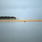 sandbar. anderson inlet, inverloch by tim buckley | bodhiimages photography