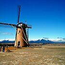 The Lily Dutch Windmill - Borden, WA by Akrotiri