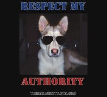"""The Daily Kitty """"Respect My Authority"""" by ADogNamedKitty"""