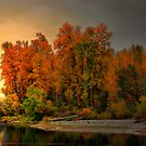 Fall On The Willamette River by Charles &amp; Patricia   Harkins ~ Picture Oregon