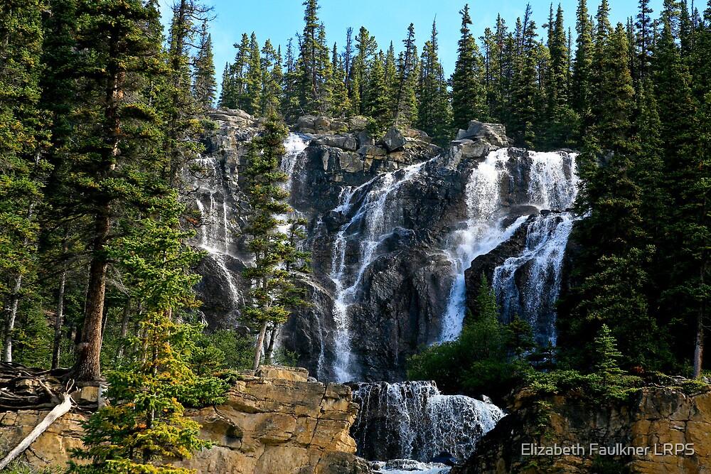 Tangle Falls by Elizabeth Faulkner LRPS