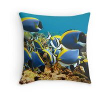 Seychelles - Underwater Throw Pillow