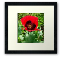 Deep Inside Framed Print