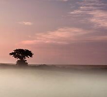 """Mists of Time""   Chicheley Hill by James  Key"
