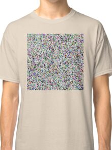 The Duck Flew The Polka Classic T-Shirt